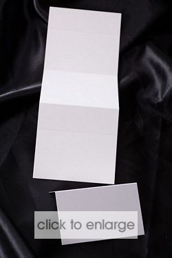 Strip of 3 Place Cards -White